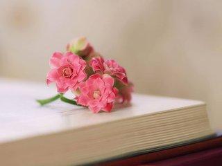 书与花.jpg