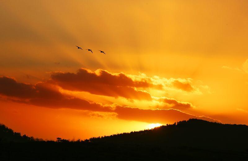 黎明的曙光