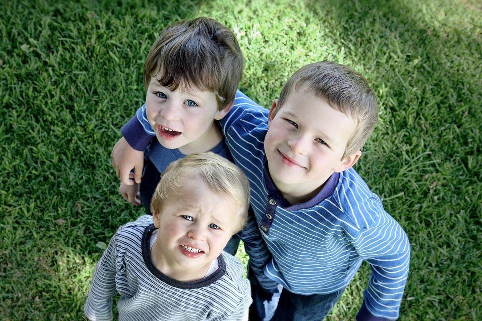 brothers-2107264_960_720.jpg