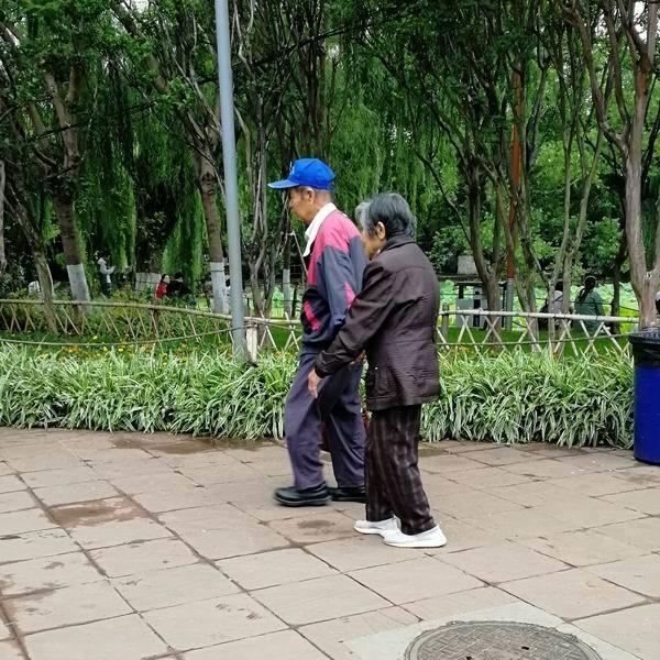 手牵手逛公园的老夫妇.jpg