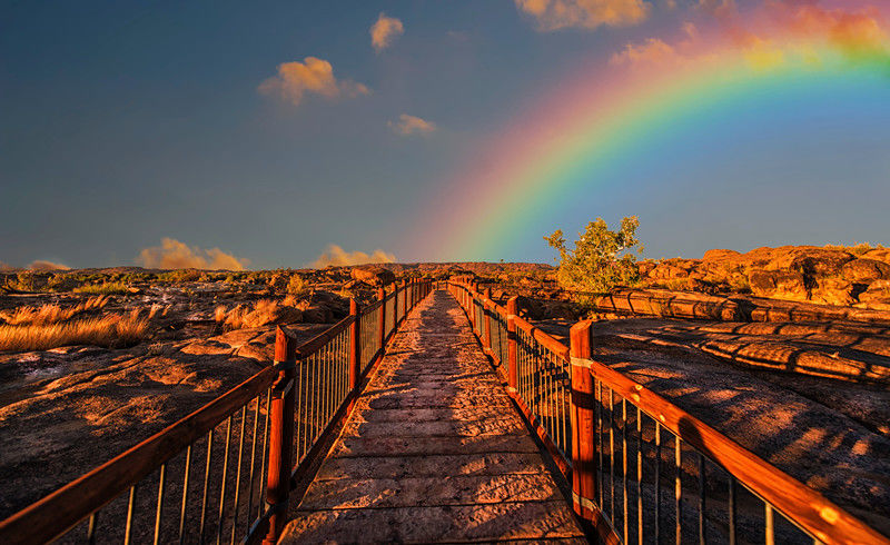 colorful-colourful-path-830829_副本.jpg